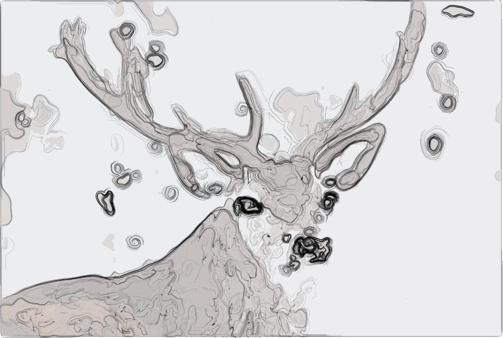 Drawing Lines In Opencv : Davidbliss